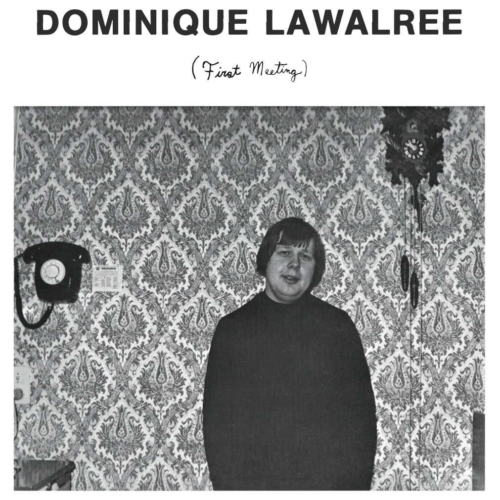 dominique-lawalree-fm-cover-art